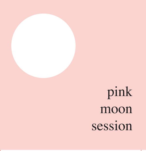 Pink-moon-ep-sleeve-Promodiscs-HR
